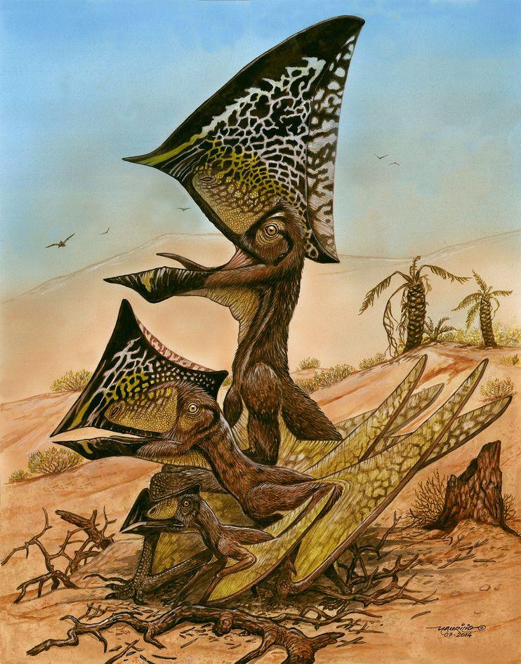 pterosaur-caiuajara-dobruskii-01_82613_990x742